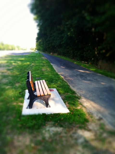 The last place my mom was and the bench there in memory of her.