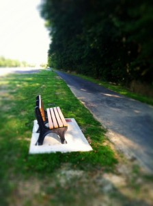 Bench we had built in my Mom's memory at the park where she passed away.
