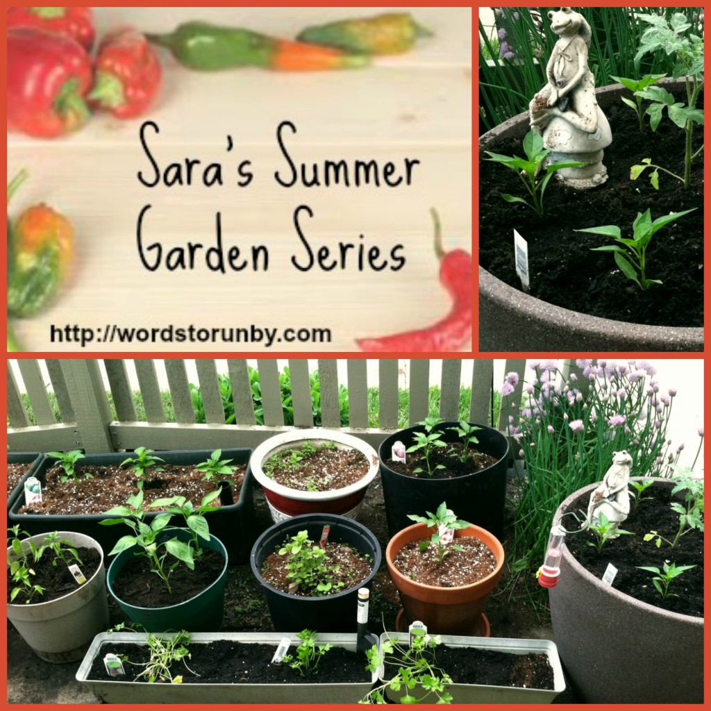Sara's Summer Garden Series Cover